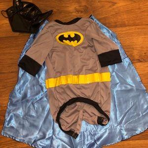 Pet Batman costume for medium sized dog